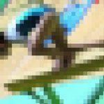 体操JK 体操競技選手権大会 女子平均台【動画】スポーツ編 3607と3604セット販売